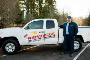 How to Choose a Pest Control Service?